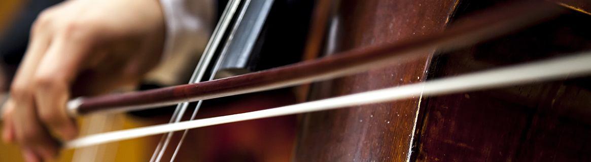 Geigenunterricht, Cello-Unterricht, Kontrabass-Unterricht in der Kreismusikschule Göttingen, Duderstadt, Osterode, Hann. Münden